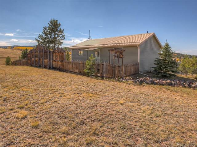 305 E Minstrel Drive, Divide, CO 80814 (MLS #5679935) :: 8z Real Estate