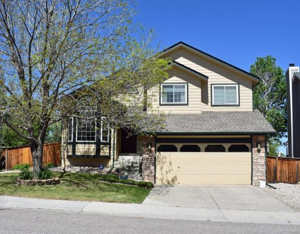 1296 Ascot Avenue, Highlands Ranch, CO 80126 (#5681129) :: My Home Team