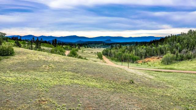 236 Wyandot Way, Como, CO 80432 (#5685115) :: West + Main Homes