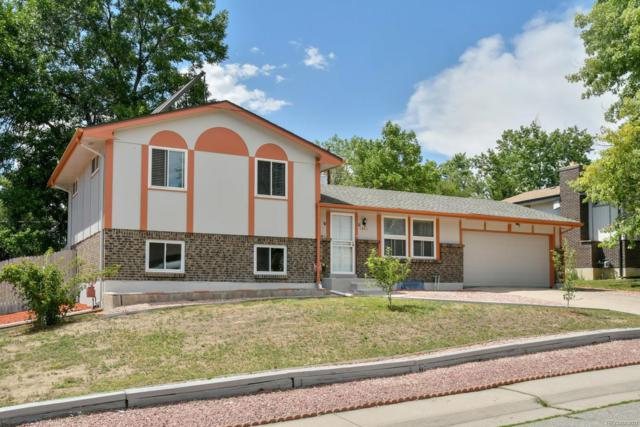 7043 Ingalls Street, Arvada, CO 80003 (#5687382) :: HomePopper