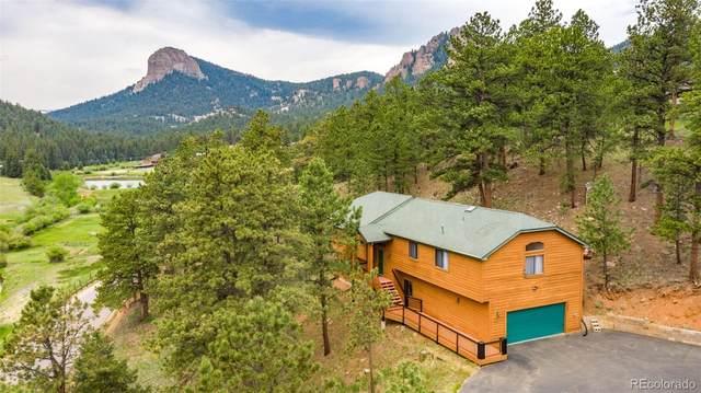 11902 S Elk Creek Road, Pine, CO 80470 (MLS #5688245) :: Bliss Realty Group