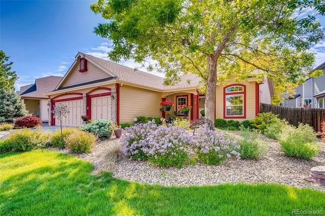 11253 Vrain Drive, Westminster, CO 80031 (#5690420) :: The DeGrood Team