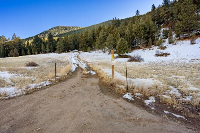 Third National Stanley Road, Idaho Springs, CO 80452 (#5691636) :: Mile High Luxury Real Estate