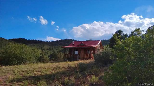 Chris Crossover, Canon City, CO 81212 (MLS #5693259) :: 8z Real Estate
