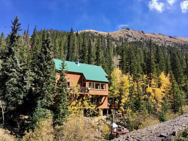 1781 Steven Gulch Road, Silver Plume, CO 80476 (#5694307) :: The Harling Team @ Homesmart Realty Group