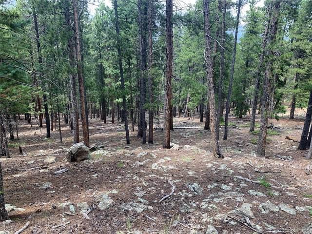 Evergreen Road, Bailey, CO 80421 (#5694757) :: Symbio Denver
