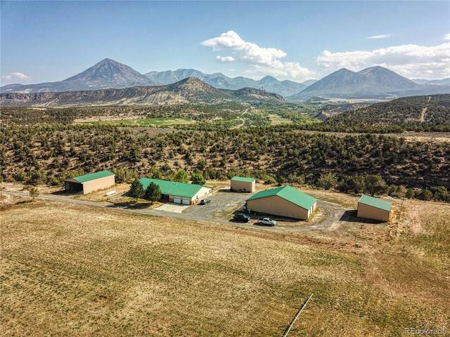 38832 Fruitland Mesa Road, Crawford, CO 81415 (#5696214) :: James Crocker Team