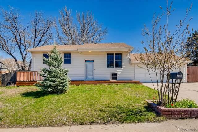 7822 Saulsbury Street, Arvada, CO 80003 (#5700284) :: Wisdom Real Estate