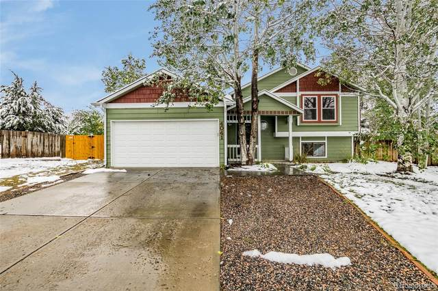 4041 Platte Drive, Fort Collins, CO 80526 (#5701394) :: The DeGrood Team