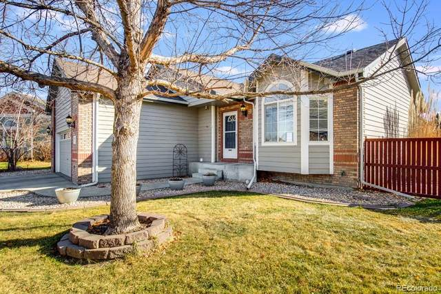 1109 Basin Court, Windsor, CO 80550 (#5703138) :: The Dixon Group