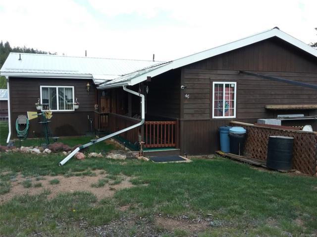 46 Gray Street, Bailey, CO 80421 (#5706686) :: Bring Home Denver