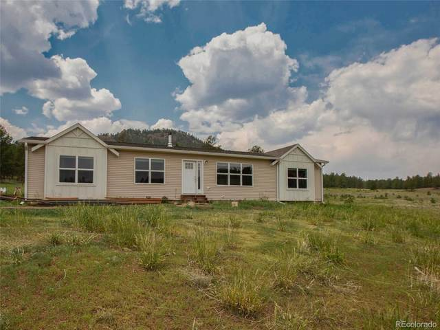 75 Highland Meadows Drive, Florissant, CO 80816 (MLS #5707368) :: 8z Real Estate