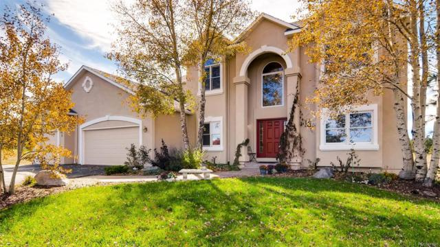 545 E King's Deer Point, Monument, CO 80132 (#5708323) :: The Peak Properties Group