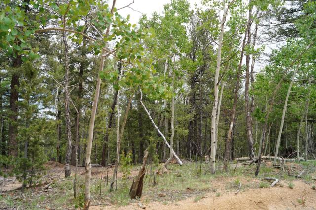 985 Princess Road, Cripple Creek, CO 80813 (#5710855) :: The Heyl Group at Keller Williams