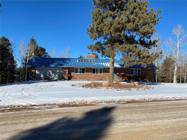175 Piney Point Lane, Woodland Park, CO 80863 (#5711877) :: The DeGrood Team