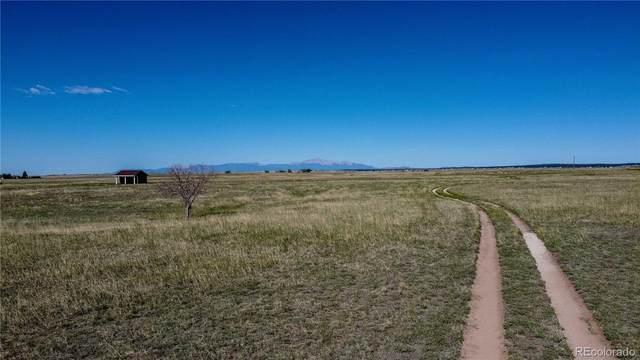 14350 Bradshaw Road, Peyton, CO 80831 (MLS #5711943) :: Find Colorado