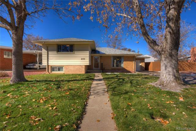 231 S 13th Avenue, Brighton, CO 80601 (#5714981) :: The DeGrood Team