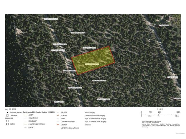 0 Platte River Drive, Fairplay, CO 80440 (MLS #5715219) :: 8z Real Estate