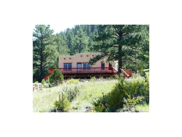 449 Dilley Road, Westcliffe, CO 81252 (MLS #5720660) :: 8z Real Estate