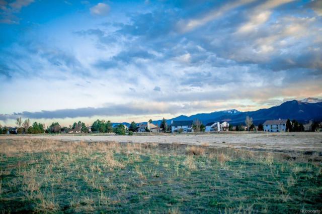 14136 Stone Eagle Place, Colorado Springs, CO 80921 (#5720697) :: James Crocker Team