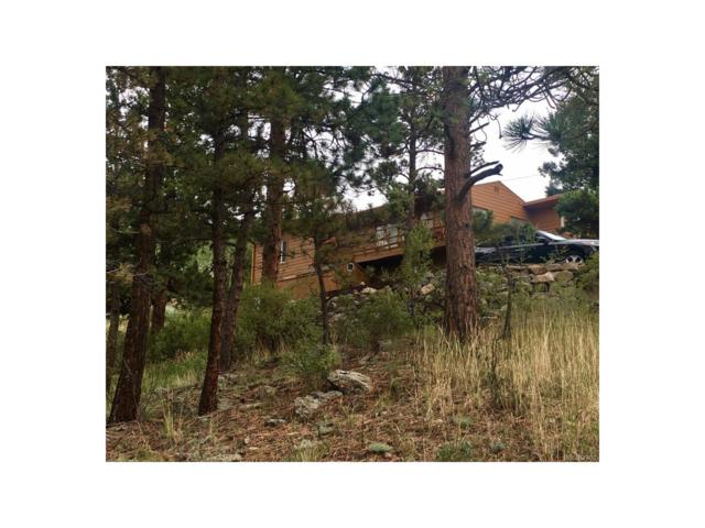 1135 County Road 72, Bailey, CO 80421 (MLS #5721549) :: 8z Real Estate