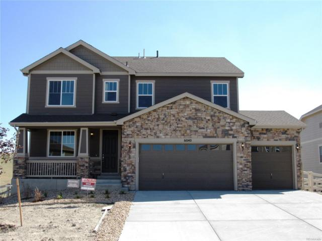 6040 Clover Ridge Circle, Castle Rock, CO 80104 (#5723631) :: The DeGrood Team
