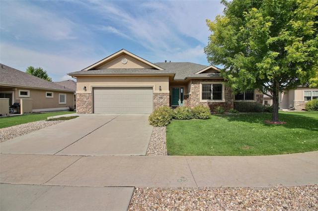1523 64th Avenue, Greeley, CO 80634 (MLS #5726277) :: 8z Real Estate