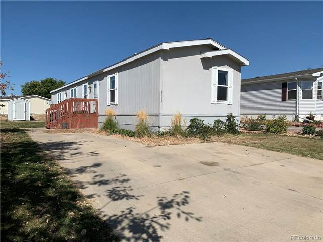 4113 Saltgrass Lane, Evans, CO 80620 (MLS #5727199) :: Kittle Real Estate