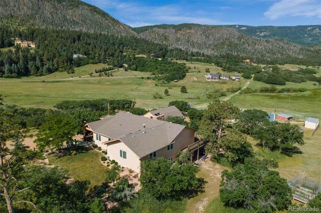 10783 S Perry Park Road, Larkspur, CO 80118 (MLS #5730472) :: 8z Real Estate