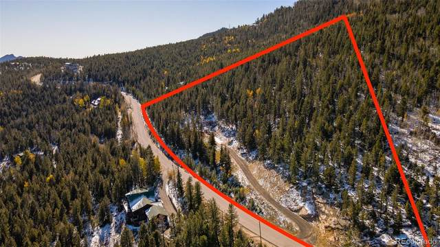 10269 Christopher Drive, Conifer, CO 80433 (#5731826) :: The Griffith Home Team