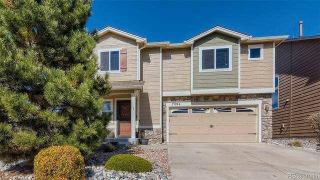 7004 Harrier Drive, Colorado Springs, CO 80922 (#5736596) :: The DeGrood Team