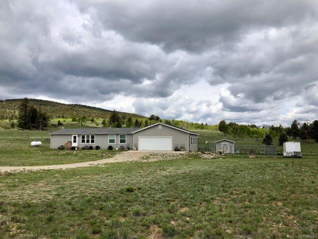1326 Kaufman Road, Hartsel, CO 80449 (MLS #5740058) :: 8z Real Estate