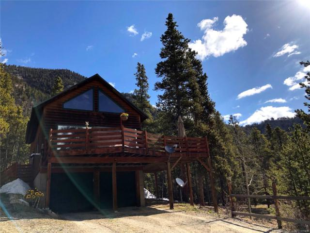 12261 E State 82 Highway, Twin Lakes, CO 81251 (#5741428) :: Wisdom Real Estate