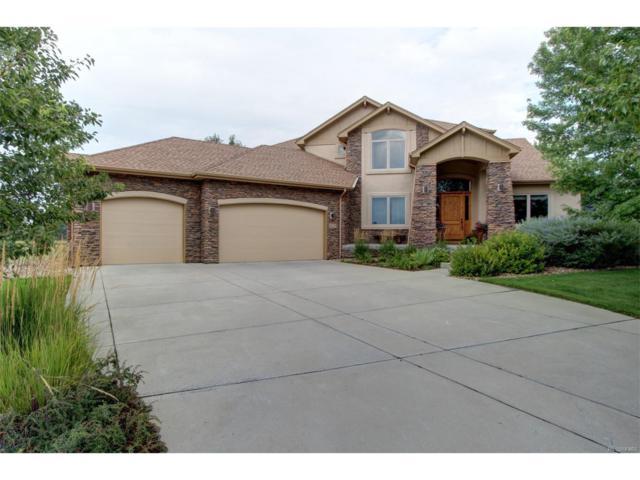 6690 Secretariat Drive, Longmont, CO 80503 (MLS #5743053) :: 8z Real Estate