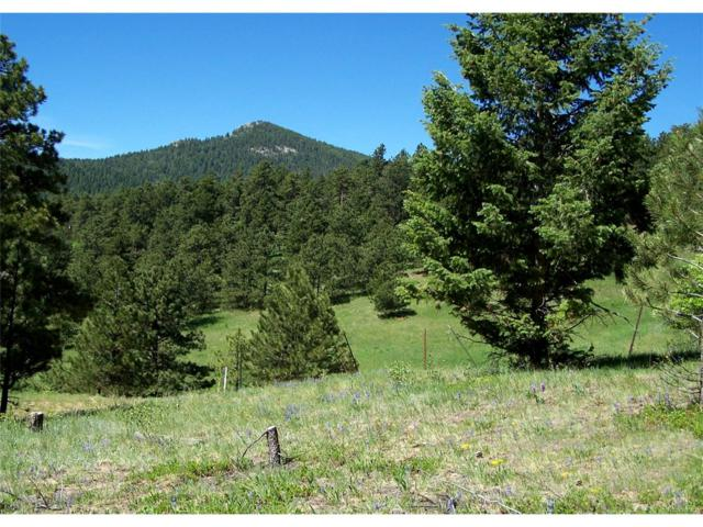9256 Broken Bow Ranch Road, Morrison, CO 80465 (#5744294) :: The Sold By Simmons Team