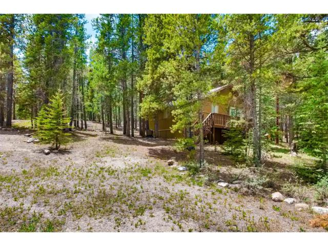 4901 Co Road 1, Alma, CO 80420 (MLS #5745729) :: 8z Real Estate