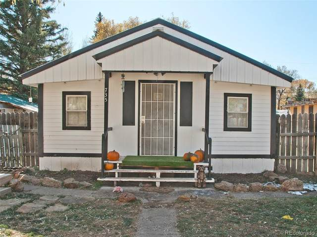 735 & 731 San Juan Avenue, Saguache, CO 81149 (#5746704) :: Real Estate Professionals