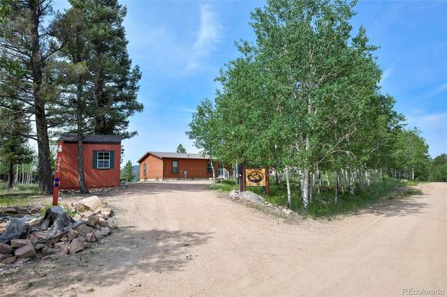 542 Castle Mountain Drive, Florissant, CO 80816 (#5752678) :: Compass Colorado Realty