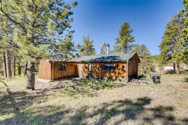 13829 S Beech Street, Pine, CO 80470 (#5752724) :: The DeGrood Team