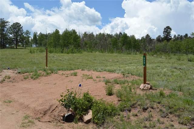 491/529 Hidden Valley Drive, Florissant, CO 80816 (#5760734) :: Compass Colorado Realty