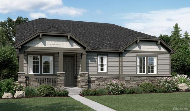 6593 Vaughn Street, Centennial, CO 80111 (#5761729) :: The Peak Properties Group