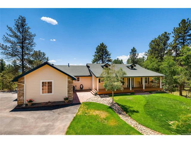 35681 Upper Aspen Lane, Pine, CO 80470 (MLS #5761948) :: 8z Real Estate
