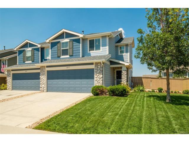 6075 Turnstone Place, Castle Rock, CO 80104 (MLS #5768366) :: 8z Real Estate