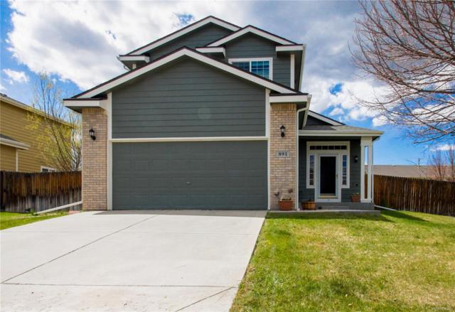 891 Fairhaven Street, Castle Rock, CO 80104 (#5773087) :: Structure CO Group