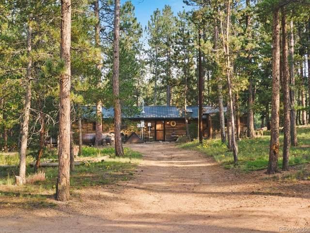 65 Road P-36, Bailey, CO 80421 (#5773622) :: iHomes Colorado