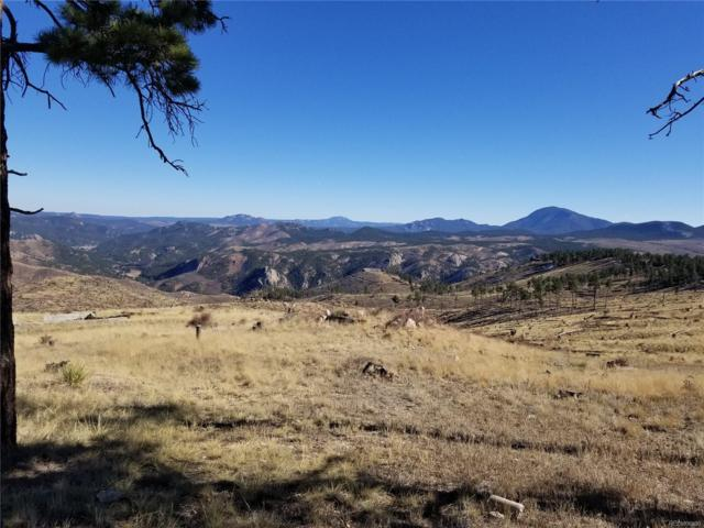 672 Hi Meadow Drive, Bailey, CO 80421 (#5774612) :: The Heyl Group at Keller Williams