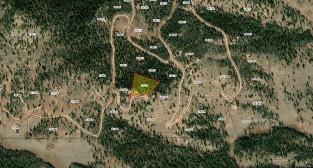 111 Nez Perce Court, Como, CO 80432 (#5776784) :: The HomeSmiths Team - Keller Williams