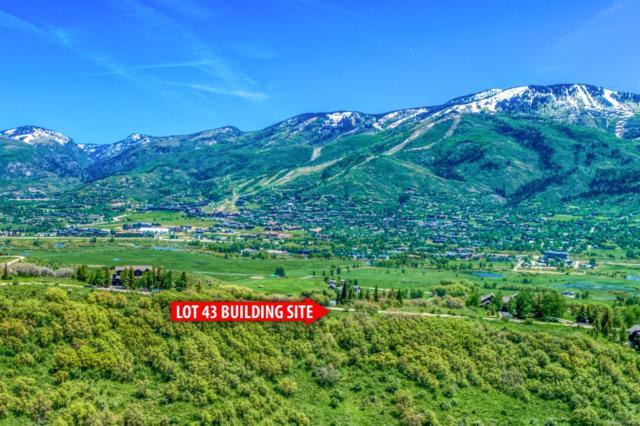 31600 Aspen Ridge Road, Steamboat Springs, CO 80487 (#5777517) :: The HomeSmiths Team - Keller Williams