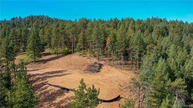 21549 Trappers Trail, Morrison, CO 80465 (#5778735) :: Chateaux Realty Group