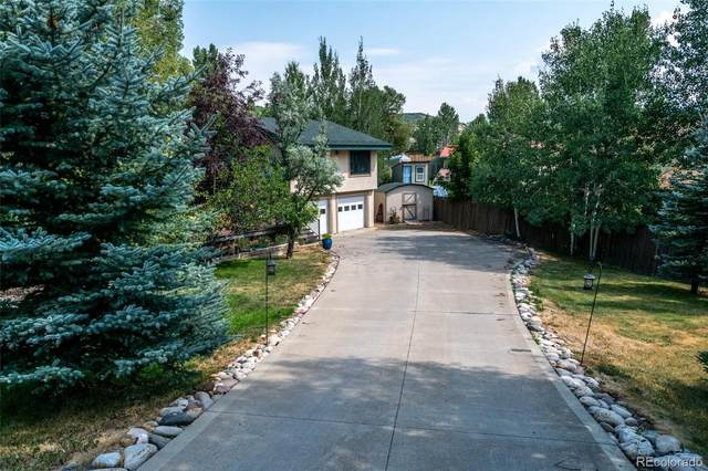 40545 Anchor Way, Steamboat Springs, CO 80487 (#5779168) :: The DeGrood Team